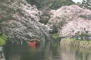 Himeyuri